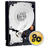 Western Digital (WD) WD RE4 - S-ATA - 1 To - 64 Mo