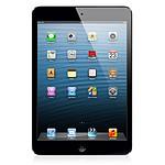 Apple iPad Mini - Wi-Fi + Cellular - 32Go (noir)