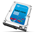 Seagate NAS HDD SATA III 6 Gb/s - 4 To