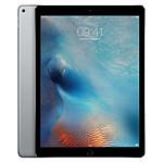 Apple iPad Pro 12,9 - Wi-Fi - 256 Go - Space Gray