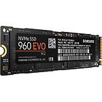 Samsung Serie 960 EVO M.2 PCIe NVMe - 1 To