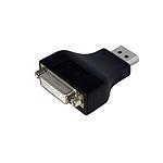 StarTech.com Adaptateur vidéo Monobloc DisplayPort / DVI-I