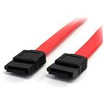 StarTech.com Câble SATA - 30 cm