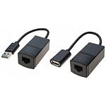 Rallonge USB / RJ45 - Cat 5