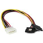 StarTech.com Câble d'alim 2 SATA / Molex - 30 cm