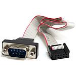 StarTech.com Câble série mâle 9broches de 41cm