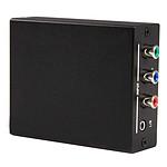 StarTech.com Convertisseur RCA Composante Vidéo / HDMI