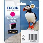 Epson Magenta T3243