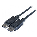Cordon DisplayPort 1.2 mâle/mâle (1 mètre)