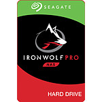 Seagate IronWolf Pro - 10 To - 256 Mo - Pack de 2