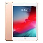 Apple iPad Mini 2019 (or) - WiFi - 64 Go - 3 Go