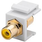 Goobay coupleur RCA jaune pour boitier réseau type Keystone