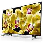 Sony KD-49XG8096 BAEP - TV 4K UHD HDR - 123 cm