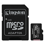 Kingston Canvas Select Plus SDCS2/256GB