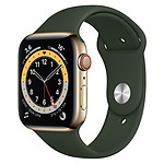 Apple Watch Series 6 Acier inoxydable (Or - Bracelet Sport Vert) - Cellular - 44 mm