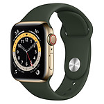 Apple Watch Series 6 Acier inoxydable (Or - Bracelet Sport Vert) - Cellular - 40 mm