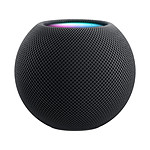 Apple HomePod Mini Gris sidéral - Enceinte connectée