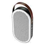 Dali Katch Blanc (Grape Leaf) - Enceinte portable