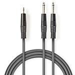 Nedis Câble Audio Stéréo 2 x Jack 6.5 mm mâles vers Jack 3.5 mm mâle - 1.5 m