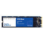 Western Digital WD Blue M.2 - 250 Go