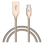 Akashi Câble USB-C / USB-A Métal Incassable - 1m