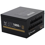 Fox Spirit US-1000G V2 - Gold