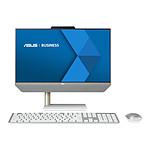ASUS Zen AiO Pro 22 E5200WFAK-WA010