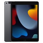 Apple iPad Wi-Fi + Cellular 10.2 - 256 Go - Gris Sidéral (9 ème génération)