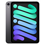 Apple iPad mini (2021) Wi-Fi + Cellular - 256 Go - Gris sidéral