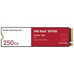 Western Digital WD Red SN700 - 250 Go