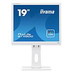 Iiyama ProLite B1980D-W1