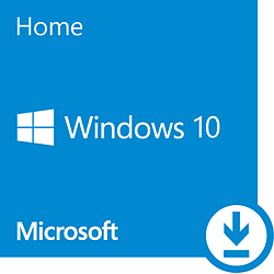 Microsoft Windows 10 Home 64 bits (oem)