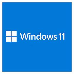 Microsoft Windows 11 Home 64 bits (oem - DVD)