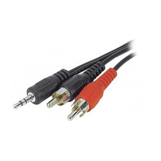 Câble audio RCA Câble audio 2 RCA / Jack 3,5 mm - 3 m