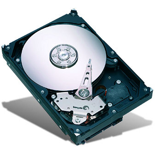 Disque dur interne Seagate Barracuda 7200.12 SATA Revision 3.0 - 250 Go