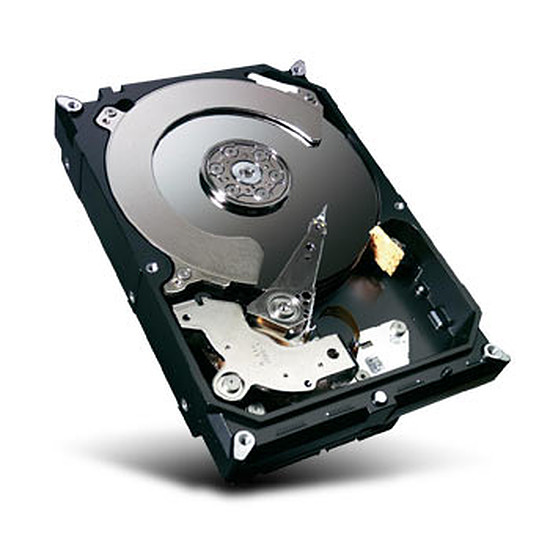 Disque dur interne Seagate Desktop HDD - 500 Go (Barracuda 7200.14 series)