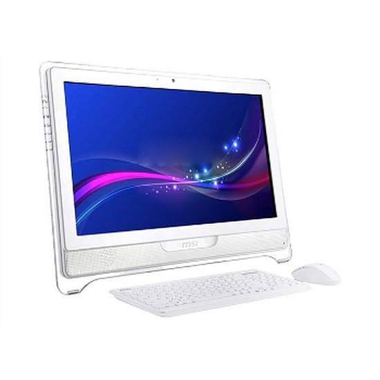 PC de bureau MSI Wind Top AE2211 (AE2211G-026FR)
