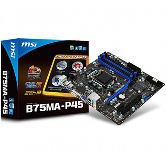 Carte mère MSI B75MA-P45