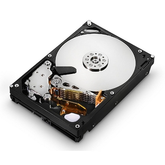 Disque dur interne Seagate Momentus Spinpoint S-ATA II - 1 To
