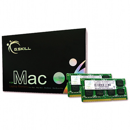Mémoire G.Skill FA-1600C11D-16GSQ - SO-DIMM DDR3 2 x 8 Go PC12800