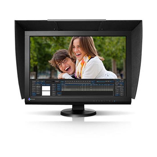 Écran PC Eizo ColorEdge CG246W + visière
