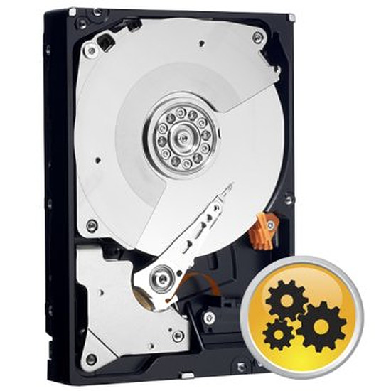 Disque dur interne Western Digital (WD) WD RE - S-ATA III 6 Gb/s - 1 To - 64 Mo