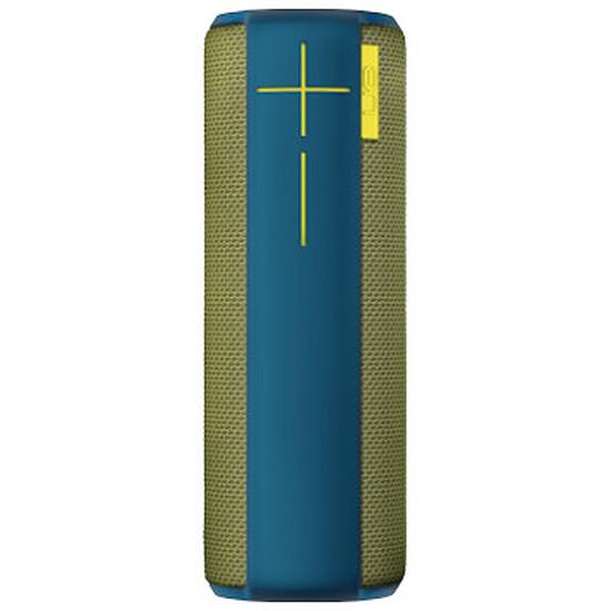 Enceinte Bluetooth Ultimate Ears Boom - Lake Moss