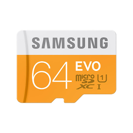 Carte mémoire Samsung Evo SDXC 64 Go (48Mo/s) + adaptateur USB