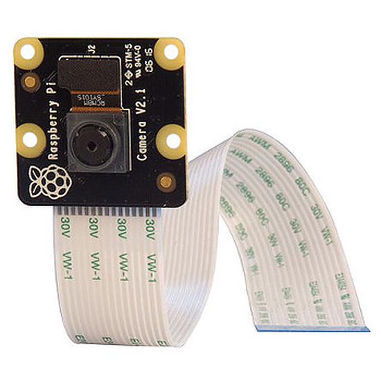 Raspberry Pi Raspberry Pi Module Caméra 8 megapixels infrarouge
