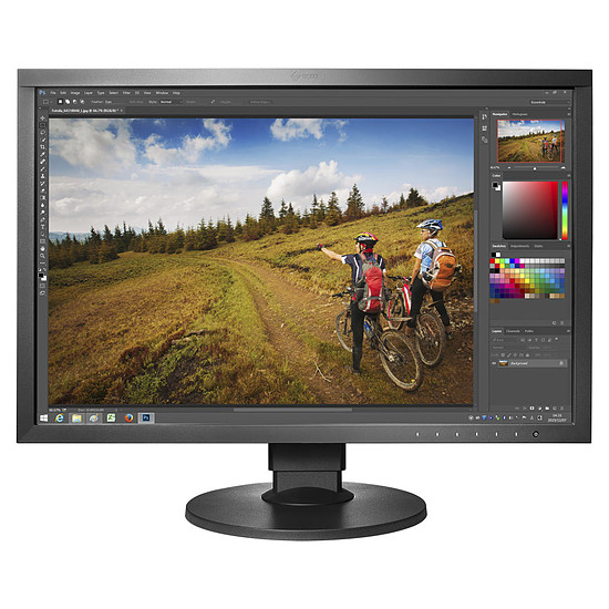 Écran PC Eizo ColorEdge CS2420-BK