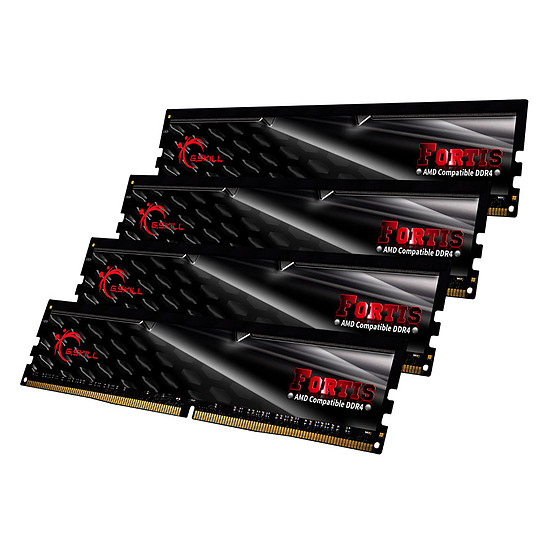 Mémoire G.Skill Fortis DDR4 4 x 16 Go 2400 MHz CAS 15