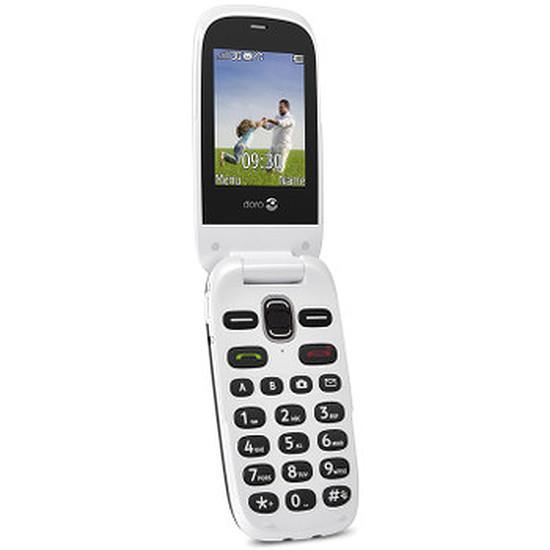 Smartphone et téléphone mobile Doro PhoneEasy 632 (noir)