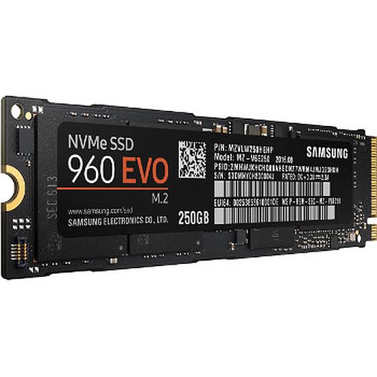 Disque SSD Samsung Serie 960 EVO M.2 PCIe NVMe - 250 Go