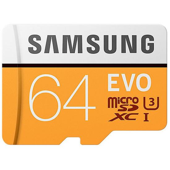 Carte mémoire Samsung Evo SDXC 64 Go (100Mo/s) + adaptateur SD